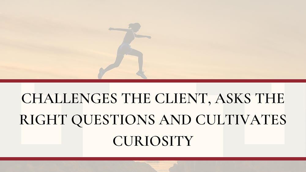 Challenges the client, asks the right questions and cultivates curiosity