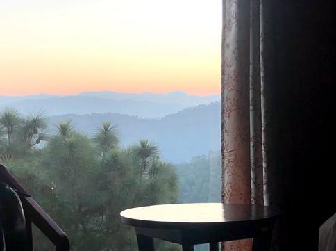 Morning glory at Pine Crest West, Kasauli