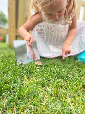 mirrorgrass.jpg