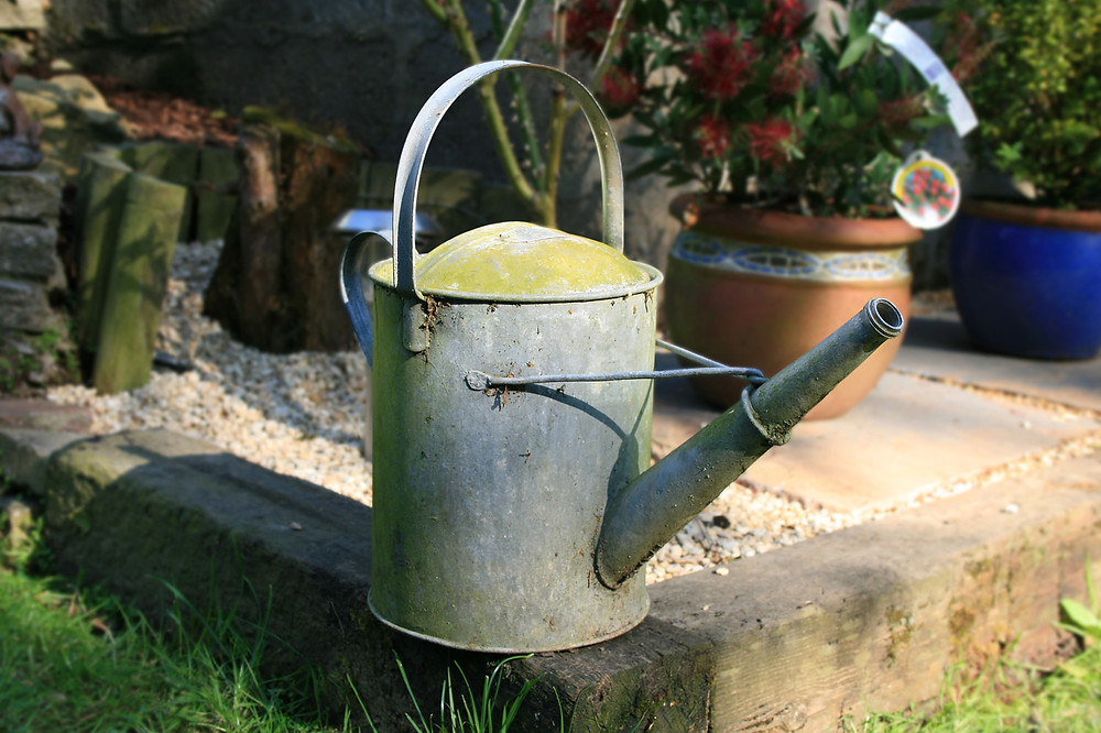 watering can at cedarwood co-ops