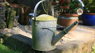 SL40 Watering Can