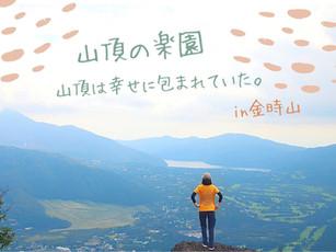 金時山の山頂は「天空の楽園」だった!幸せが溢れる秋のトレッキング