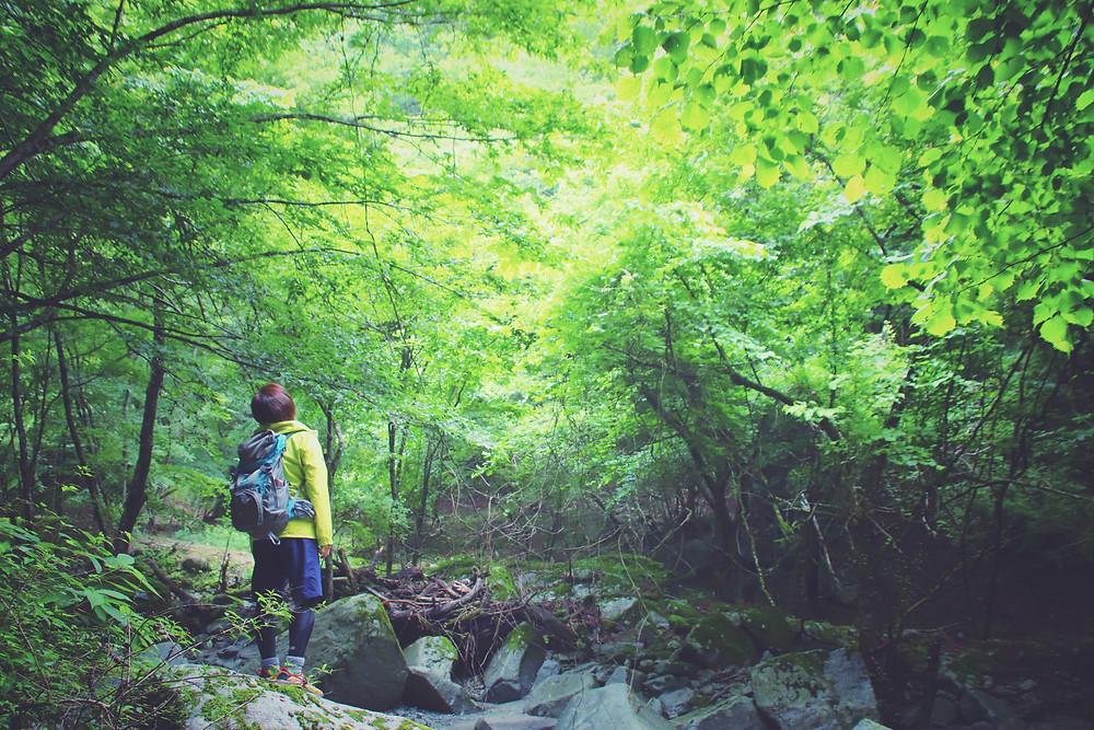 山でボ〜っとしてみるのは気持ちがいい  earth trekking