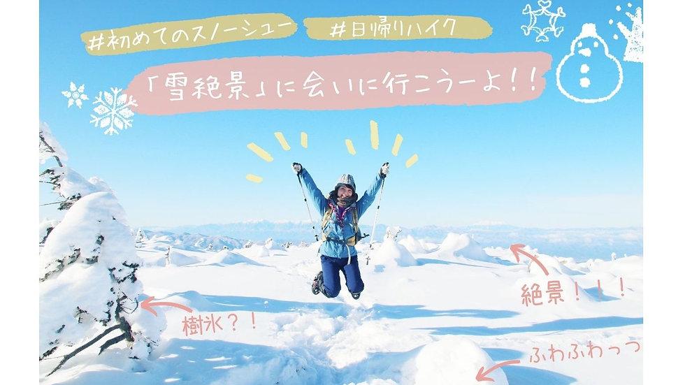 【雪絶景の初スノーハイク】もふもふの雪森を歩き「樹氷」を抜けた先に広がる「雪絶景」に会いに行こう!