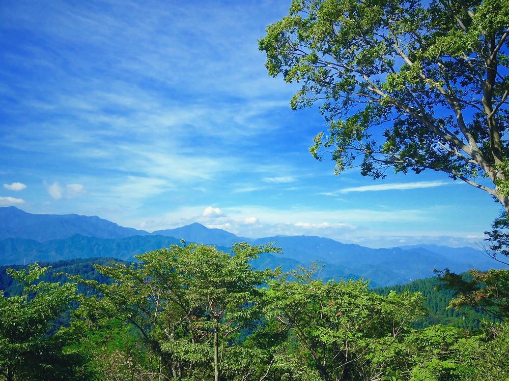 ゆるハイキング・高尾山earthtrekking