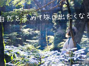 「 なぜ私たちは自然を求める? 」湘南のニュースから自然と人間の関係性を考えてみたら、案外面白い。