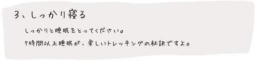 フロー3.jpg