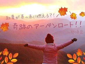 「奇跡のアーベンロート」紅葉が真っ赤に燃え上がる?!in那須岳