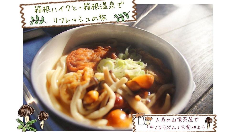【箱根deハイク】人気の金時茶屋「きのこうどん」と「箱根湯本の温泉」でまったりトレッキング