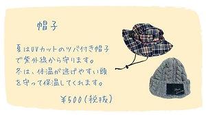 10、帽子.jpg