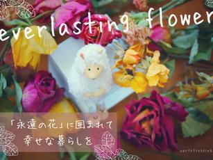 【ドライフラワーの作り方】永遠の花に囲まれて、幸せな暮らし。お家に自然をとりいれよう。