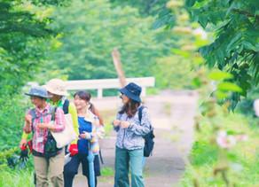 earth trekking:「神奈川県 秦野市」 とコラボで森林浴を開催