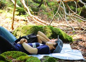 「鳥取県 智頭町」 と共同で森林セラピー®イベントを開催しました