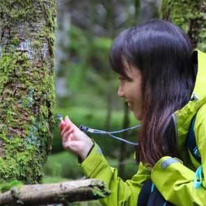 【ツアーレポート】苔むす森と原生林が美しい白駒池で「コケ観察」