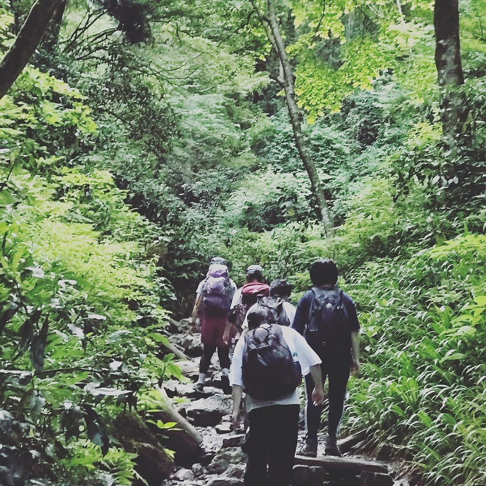 earth trekking 高尾山の自然
