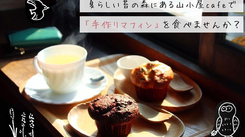 【ほっこり入門さん】夏らしい苔の森と山小屋cafeで「手作りマフィン」を食べるトレックの会