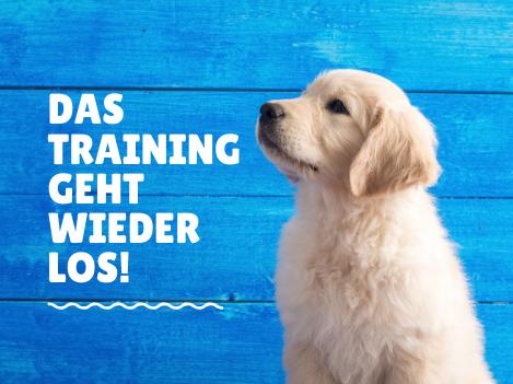 Trainingsbeginn - Endlich gute Neuigkeiten!