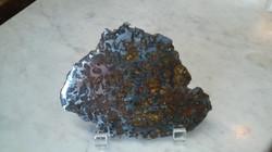 SLie og Brenham Pallasite Meteorite