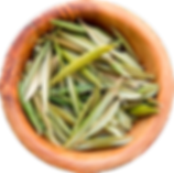 olive_leaves_cup.png