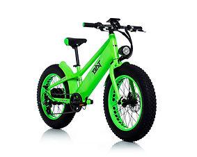 BAT-Green-Flou-1.jpg