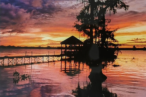 Tanya Ackerman - Cypress Sunset