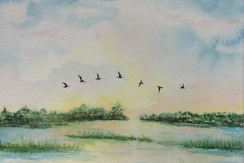 Nancy Bracken - Pawleys Marsh