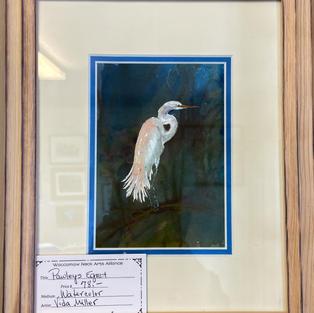 Pawleys Egret by Vida Miller