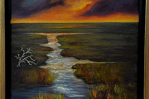 Marsh Aglow
