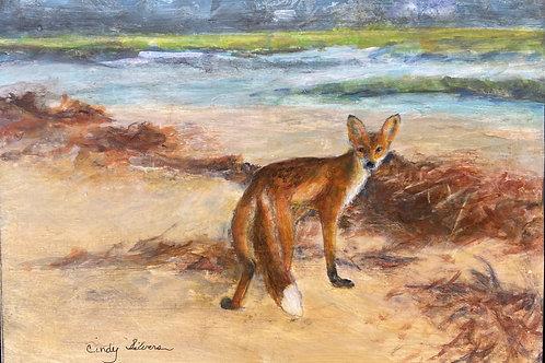 Cindy Silvers - A Very Pretty Fox