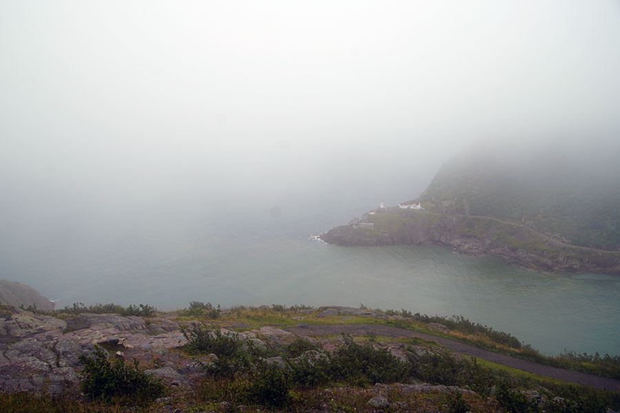Morning fog from Signal Hill