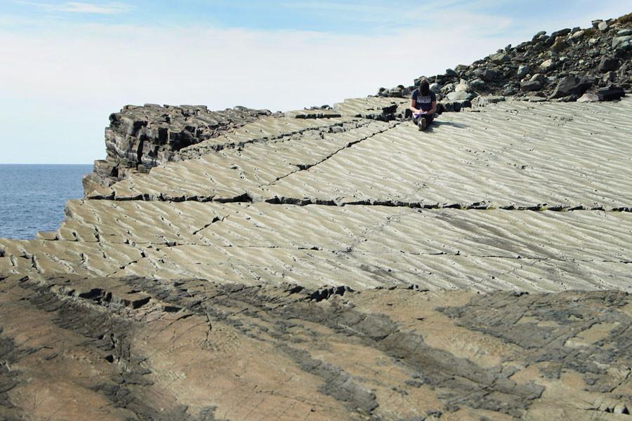 Mistaken Point - Fossilized ancient sea floor