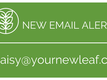 New Email Alert!
