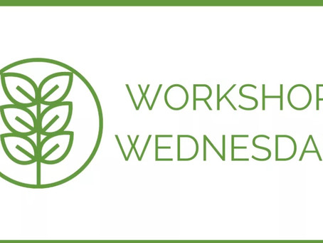 It's...Workshop Wednesday at Your New Leaf!