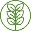 2020 YNL Logo (2).png