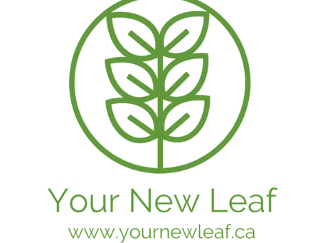 YNL UPDATE! Your New Leaf is turning over some NEW leaves of our own. More details coming soon.