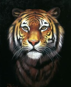 Tutorial Como Pintar um Tigre