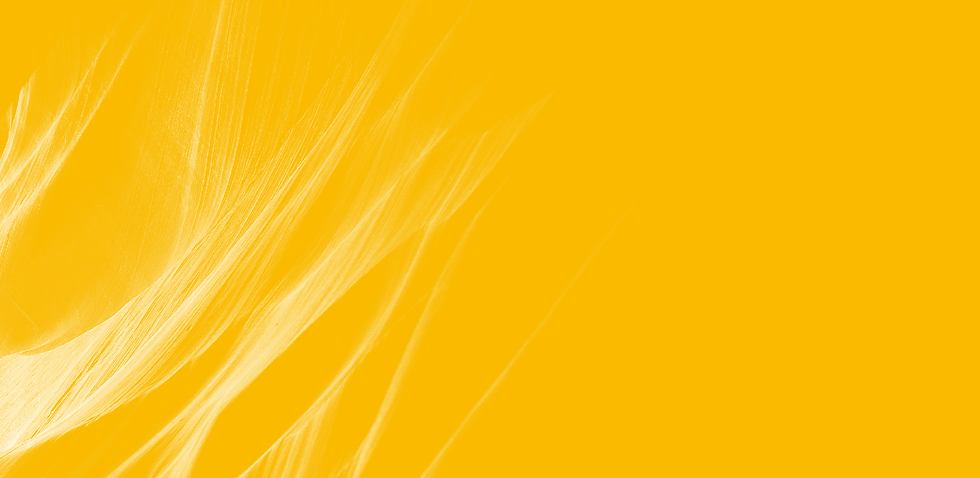 modality-background.png
