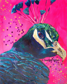 Pink Peacock | £200