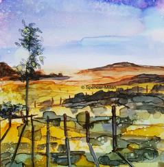 Camino Day 1 : Between Roncesvalles and Zubiri