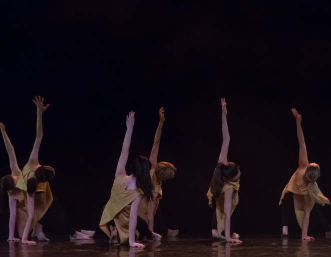 Gala_de_danse-100.jpg