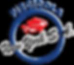 Logo PNY Vectorizadp.png