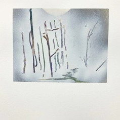 Paper Forest Series #6