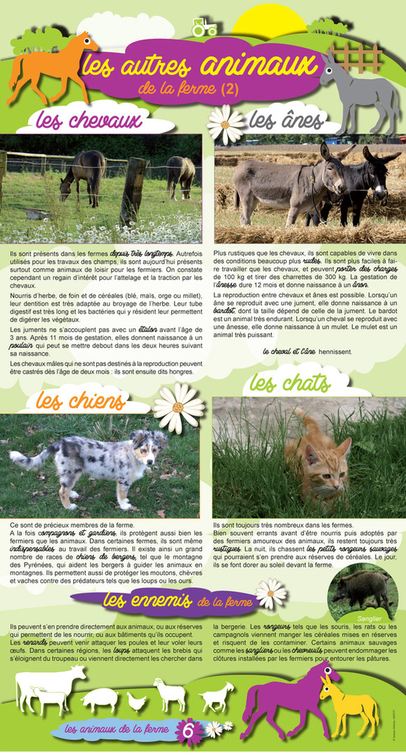 Animaux de la ferme (6).jpg