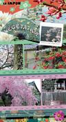 Japon bd 3.jpg