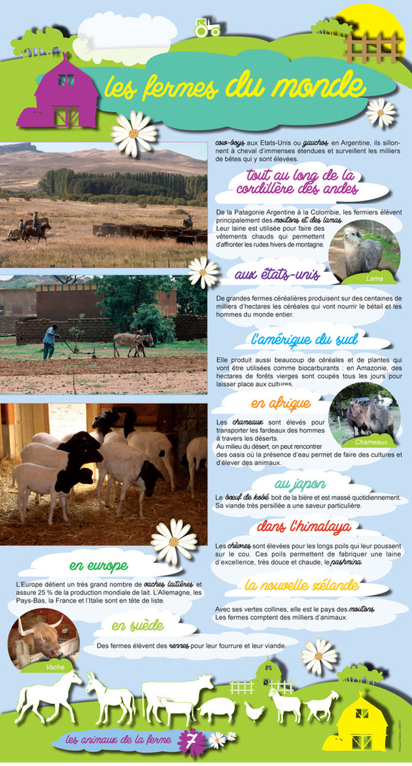 Animaux de la ferme (7).jpg