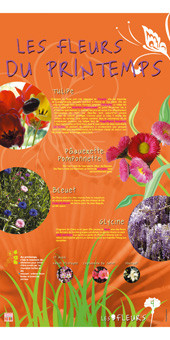 exposition fleurs 4.jpg