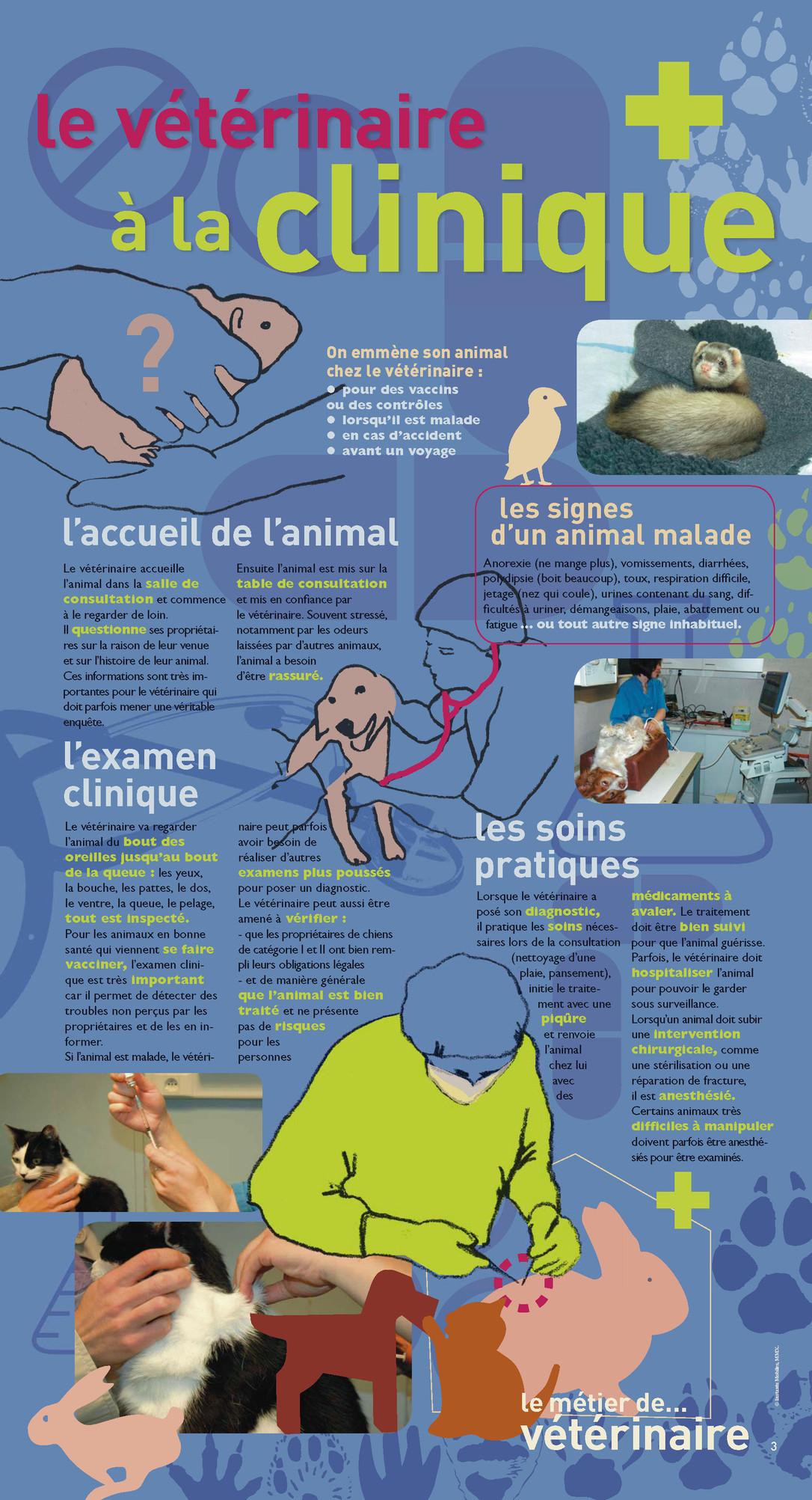 P3 Expo Veterinaire.jpg