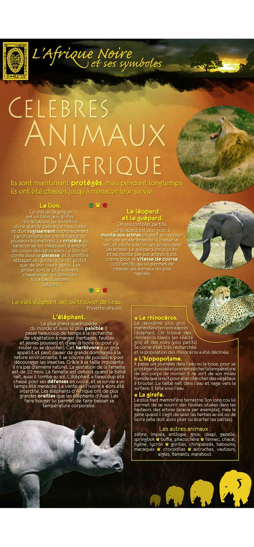 Afrique-5.jpg