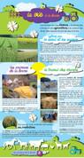 Animaux de la ferme (8).jpg