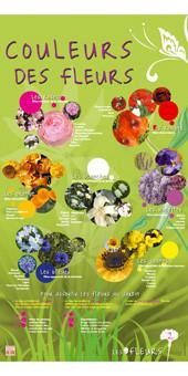 exposition fleurs 2.jpg